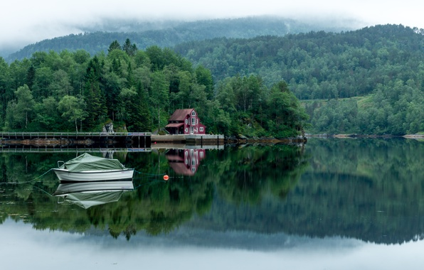Picture forest, trees, fog, lake, house, boat, Landscapes