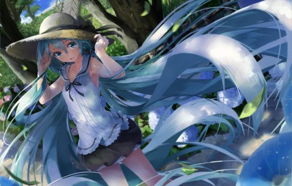 Picture girl, hair, hat, anime, art, vocaloid, hatsune miku, daidou, demitasse