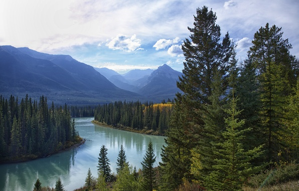 Picture forest, the sky, clouds, trees, mountains, lake, river
