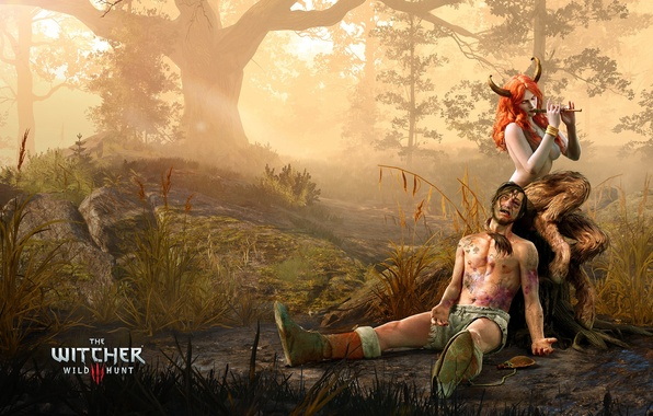 Photo wallpaper The Witcher, The Witcher 3, Wild Hunt, Succub
