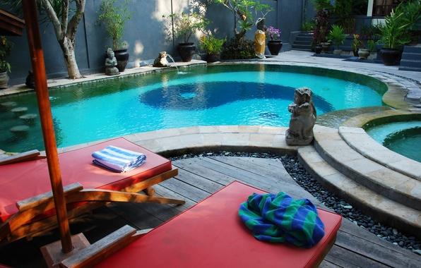 Picture water, trees, design, vegetation, interior, towel, plants, pool, figurine, figure, Yin-Yang