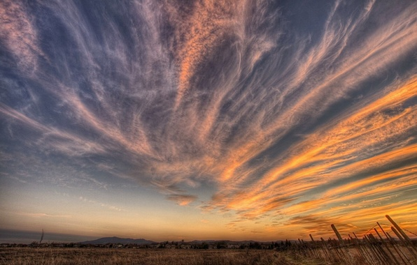 Picture field, the sky, clouds, sunset, 157
