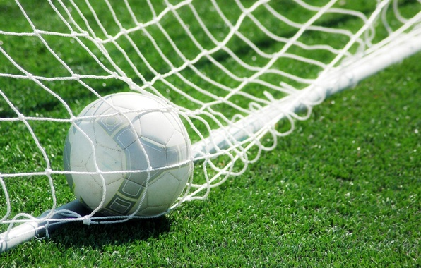 Picture grass, mesh, lawn, football, the ball, gate, goal