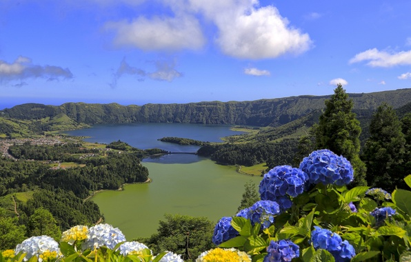 Picture flowers, mountains, lake, Portugal, Azores, the island of San Miguel