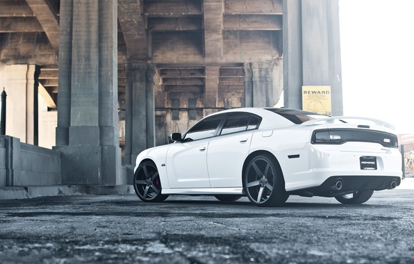 Picture white, bridge, white, Dodge, bridge, dodge, charger, srt8, SRT, the charger, wing, exhaust pipe, tail …