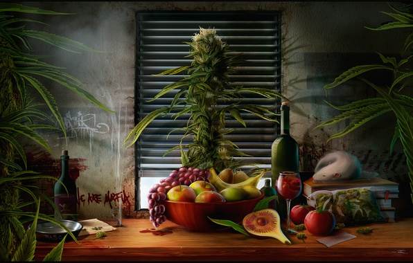 Picture grass, table, wine, apples, books, Bush, bottle, package, window, plate, grapes, still life, banana, pear, ...