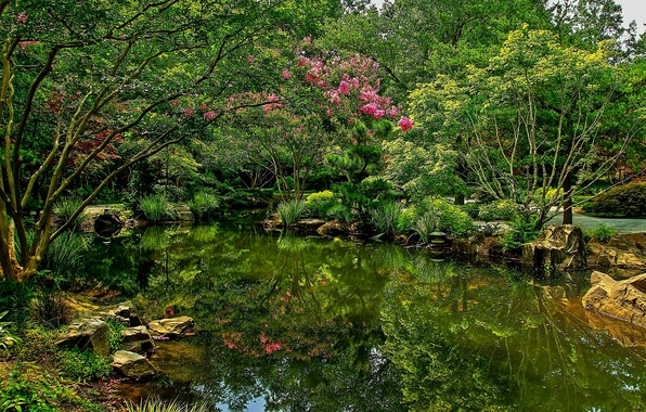 Picture photo, Nature, Pond, The bushes, Park, USA, Gibbs Gardens