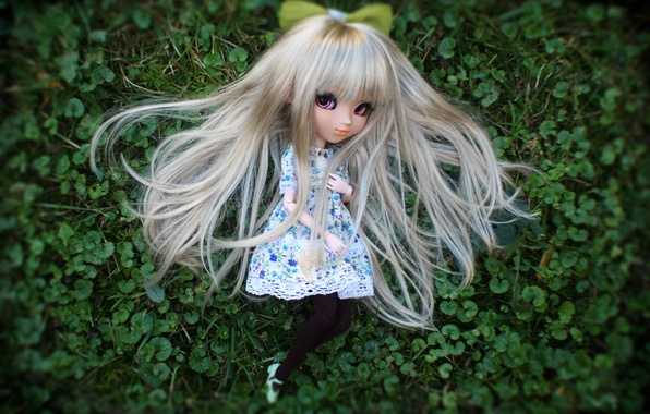 Picture grass, doll, long hair
