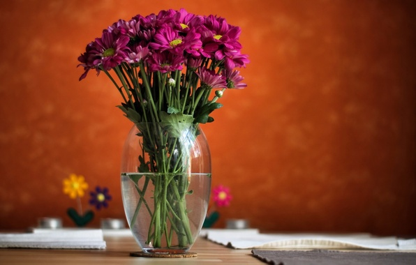 Picture water, flowers, background, blur, vase, pink