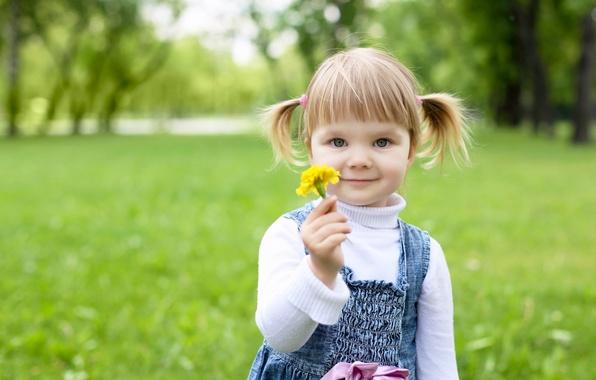 Picture trees, happiness, flowers, children, childhood, Park, child, flower, trees, park, child, childhood, children, little girl, …