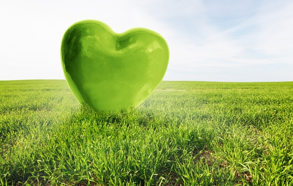 Wallpaper green, field, heart, love, heart, love images ...