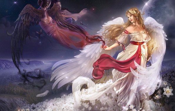 Picture girl, flowers, wings, angel