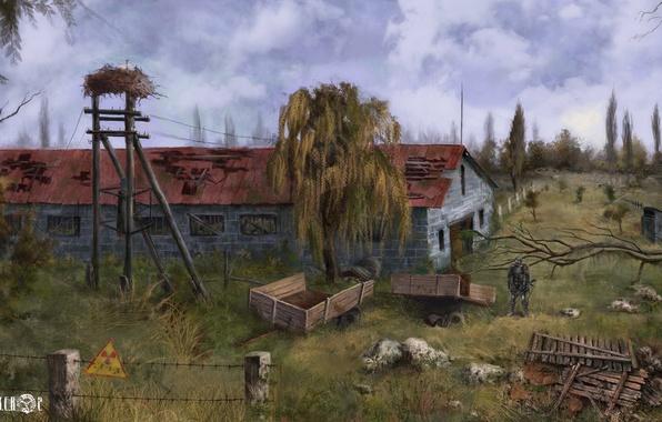 Picture trees, composition, stalker, Stalker, Pripyat, area, Ukraine