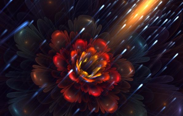 Picture flower, fireflies, petals, art, fractal