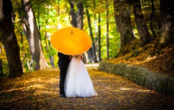 Picture autumn, girl, trees, love, yellow, umbrella, Wallpaper, mood, woman, umbrella, costume, wallpaper, male, love, guy, …
