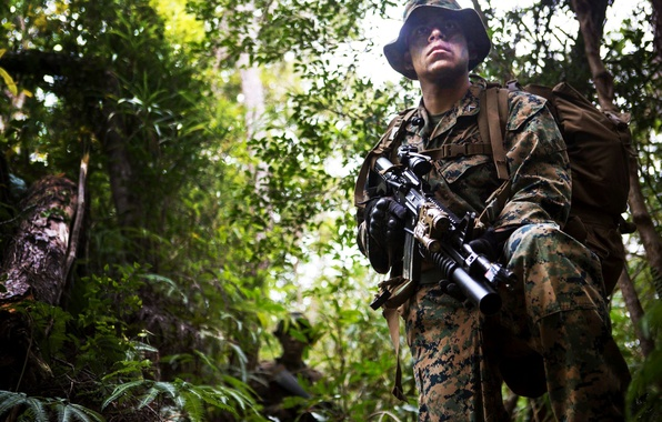 Picture forest, weapons, soldiers, camouflage