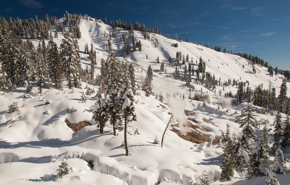 Picture winter, the sky, the sun, snow, trees, mountain, slope, CA, couples, USA, California, Lassen Volcanic …