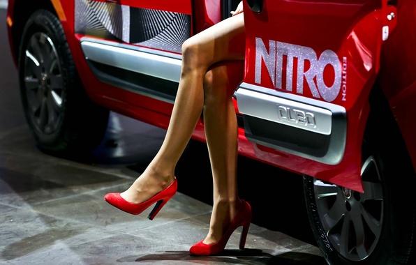 Picture background, legs, Fiat, Fiat, Qubo, Nitro