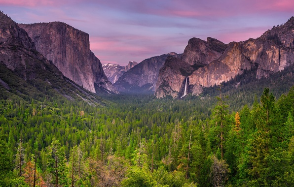 Picture forest, the sky, clouds, trees, sunset, mountains, spring, the evening, CA, April, USA, Yosemite national …