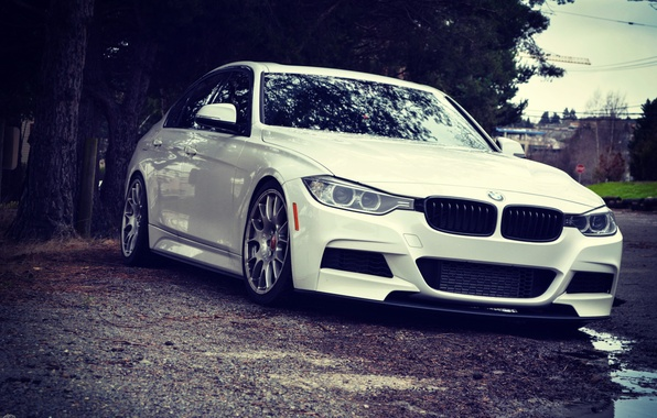 Picture BMW, white, WHEELS, stance, f30