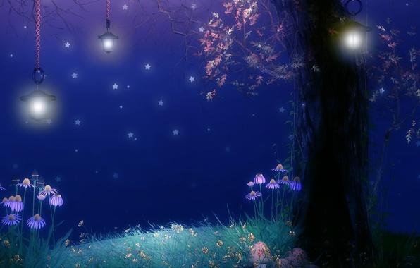 Picture flowers, night, tree, foliage, mushrooms, stars, lights