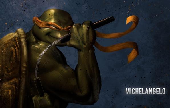 Picture teenage mutant ninja turtles, nunchuck, Michelangelo