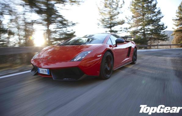 Picture road, the sun, trees, red, Lamborghini, supercar, Gallardo, supercar, top gear, the front, the best …