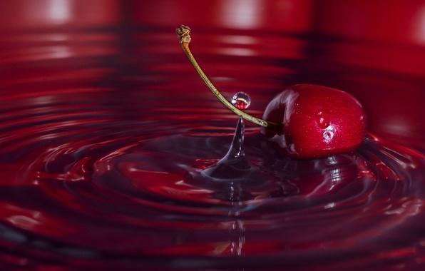 Picture water, macro, cherry, drop, berry, cherry