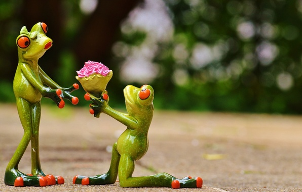 Picture love, flowers, gift, toys, frog, bouquet, pair, frogs, figures, recognition, frog