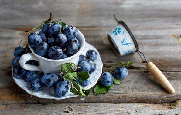 Picture leaves, Cup, plum, saucer, Julia Khusainova