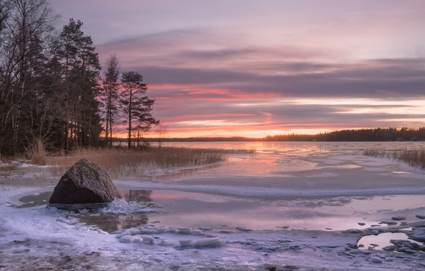 Picture winter, trees, sunset, stone, Bay, Finland, Finland, The Gulf of Finland, Ruonala, Gulf of Finland, …