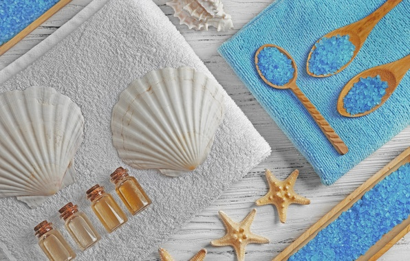 Picture relax, shell, Spa, still life, salt, spa, salt, seashells, wellness