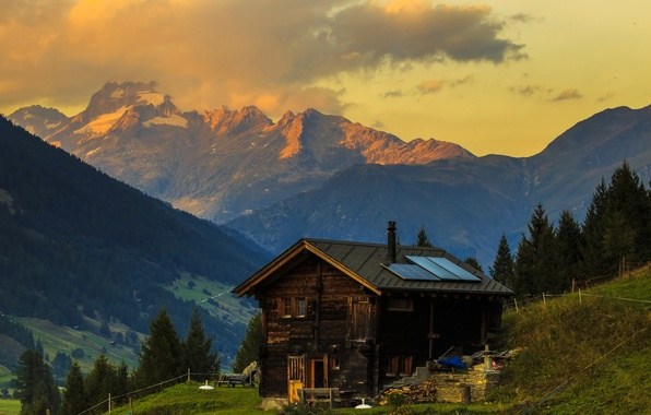 Picture grass, trees, mountains, Switzerland, slope, Alps, house