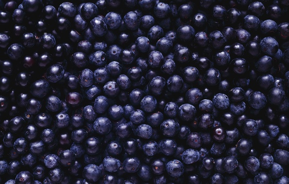 Picture berries, black, blueberries, a lot