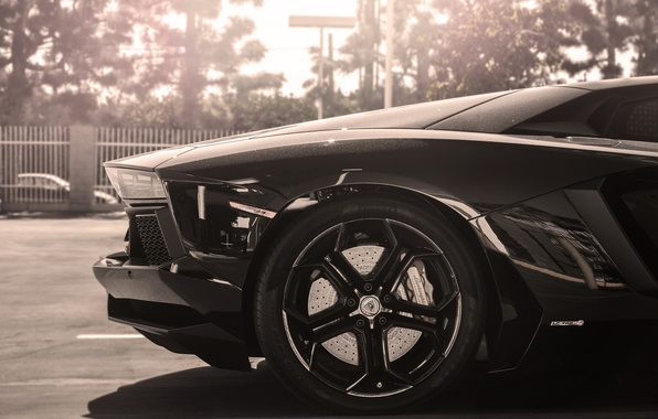 Picture the sun, black, Lamborghini, wheel, disk, black, sun, rim, aventador, lp700-4, Lamborghini, aventador, back