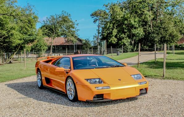 Picture Lamborghini, wallpaper, supercar, auto, orange, Diablo, VT 6.0