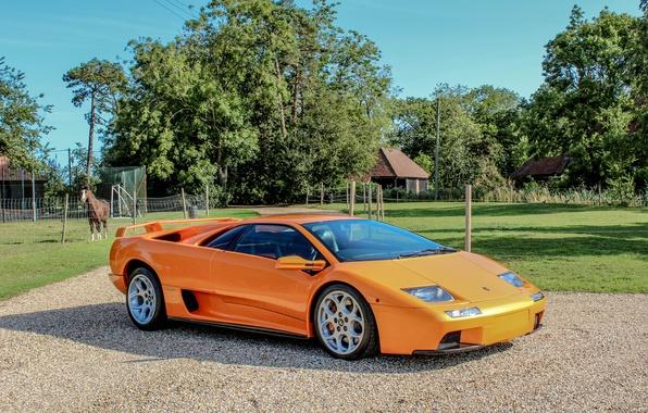 Picture Lamborghini, 2000, Lamborghini, Diablo, Diablo