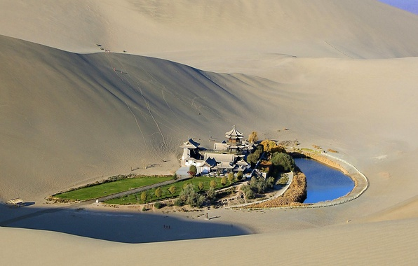 Picture sand, grass, trees, pond, desert, pagoda, oasis