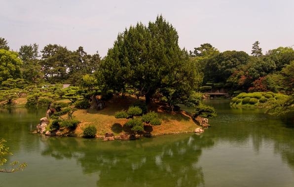 Picture trees, landscape, nature, pond, Park, photo, Japan, Takamatsu, Ritsurin garden