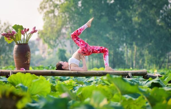 Picture girl, nature, pose, gymnastics, yoga, legs, Asian