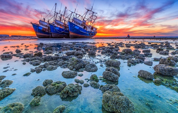 Picture landscape, the ocean, dawn, shore, ships, stranded, korablekrushenie