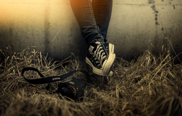 Picture grass, light, wall, shoes, camera, Sony, All Star