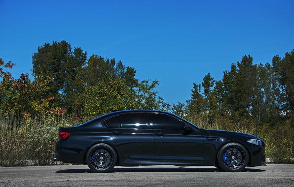 Picture black, bmw, profile, drives, black, blue, f10, wheels.BMW, calipers