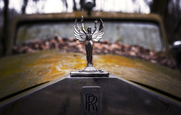 Picture retro, rusty, the hood, old, emblem, rolls royce, label