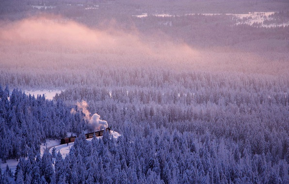 Picture winter, road, forest, train, Germany, Saxony-Anhalt