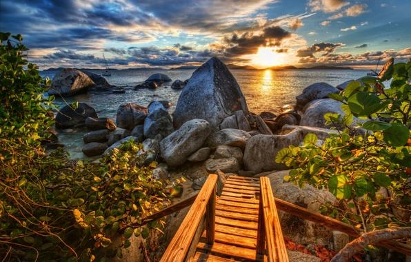 Picture sea, sunset, stones, coast, the bushes