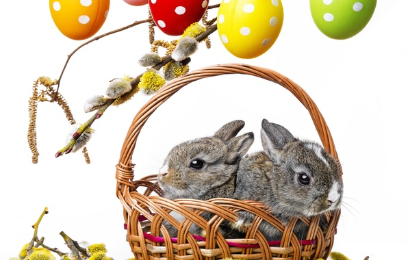 Picture flowers, branches, basket, spring, colorful, Easter, rabbits, Verba, rabbit, flowers, spring, Easter, eggs, easter, bunny, …