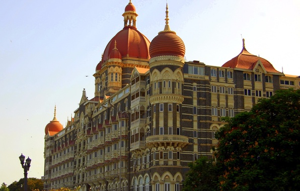Picture trees, the city, photo, India, The Taj Mahal Palace