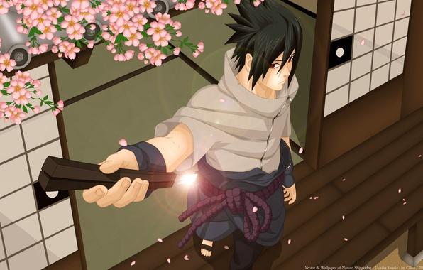 Picture sword, katana, Sakura, art, guy, naruto, uchiha sasuke, luffy-san92