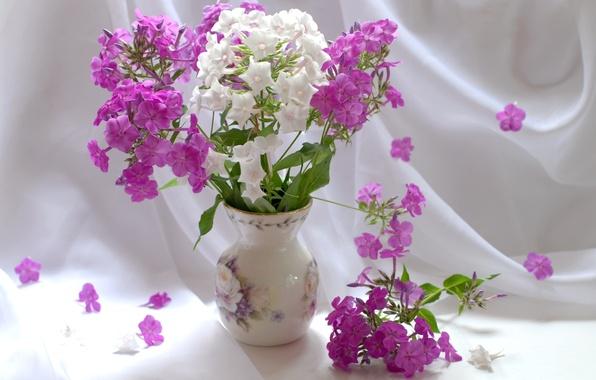Picture bouquet, vase, still life